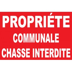 Propriété communale chasse interdite