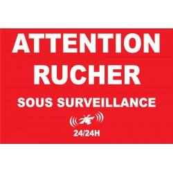 Attention rucher sous surveillance 24/24