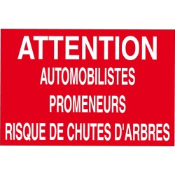 Attention automobilistes promeneurs risque chutes d'arbres