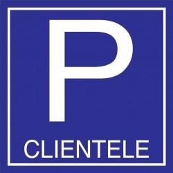 Parking clientele 500x500mm