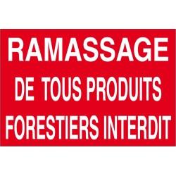 Ramassage de tous produits forestiers interdit