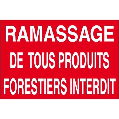 Ramasage de tous produits forestiers interdit